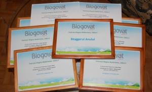 blogovat-2009